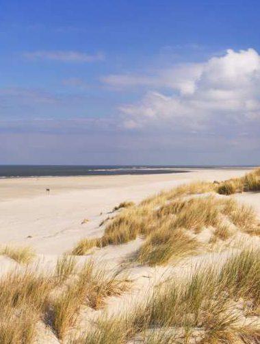 Vakantiehuis Terschelling - strand